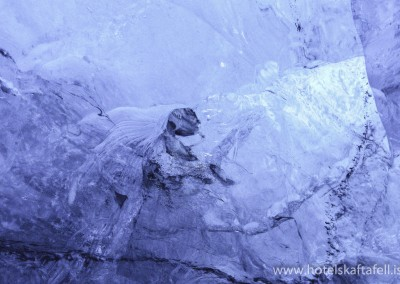 All kind of formations and beings in the ice